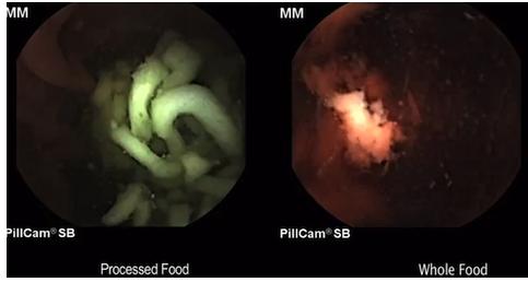 processed_food_vs_fresh_food_digestion