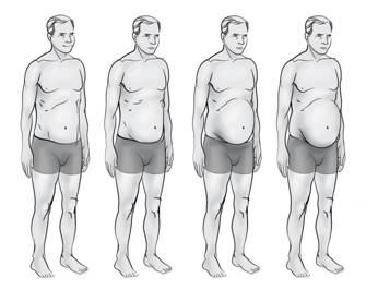 liver -body-type